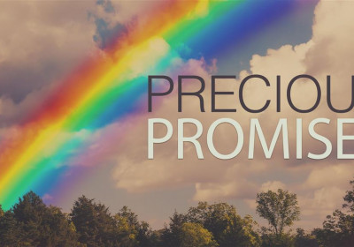 The Purposes of God's Promises